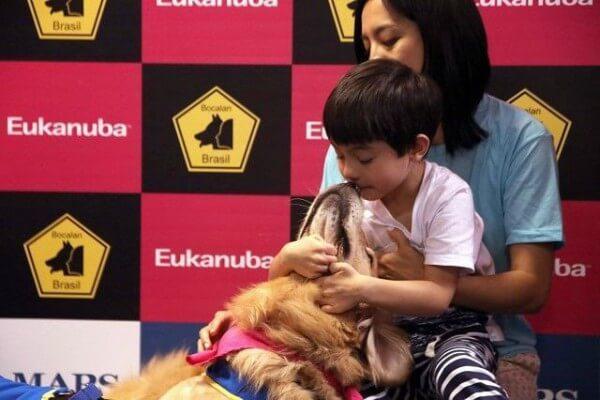 Como cães de assistência podem ajudar autistas?